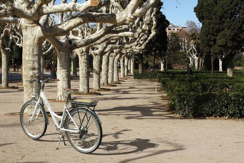 E-bike at urban park